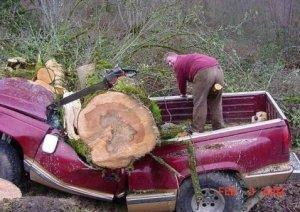 Never let children use a chainsaw!
