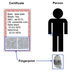 A hash is like a fingerprint