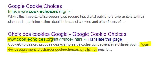 cookiechoices.js French Google search