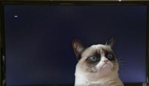 Grumpy BIOS