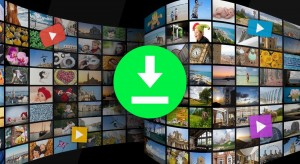 Download Videos from the Net