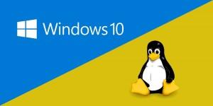 Windows-Linux Dual Boot