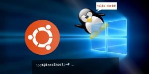 Ubuntu Bash + Windows 10